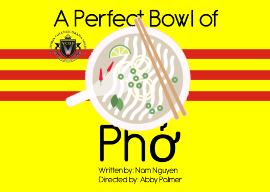 The Strand reviews VCDS presents A Perfect Bowl of Phở
