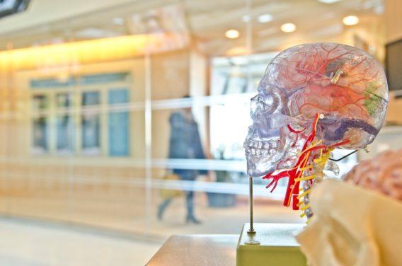 Examining neurologist Oliver Sacks
